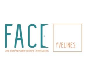 DPO-Value-logo-membres-associatifs-300x250-V1-face-yvelines